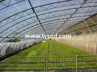 PVC Greenhouse film