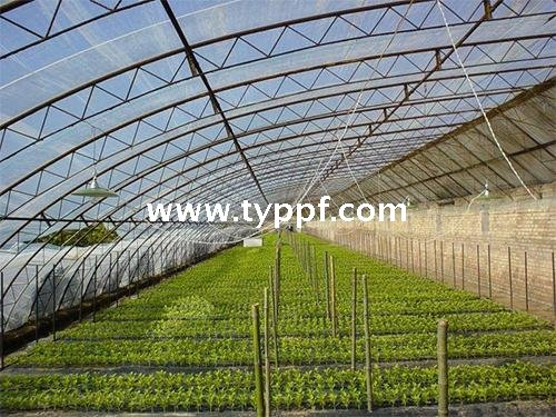 PVC Greenhouse film from China manufacturer - Sid packing